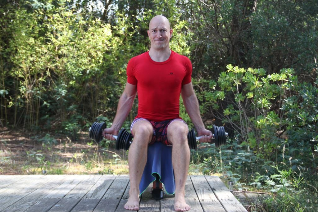 Curl en supination assis unilatéral alterné avec haltères