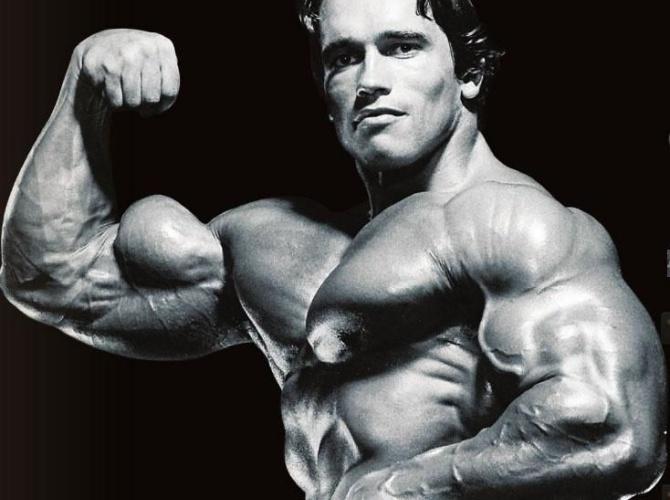 Musculation des biceps avec haltères