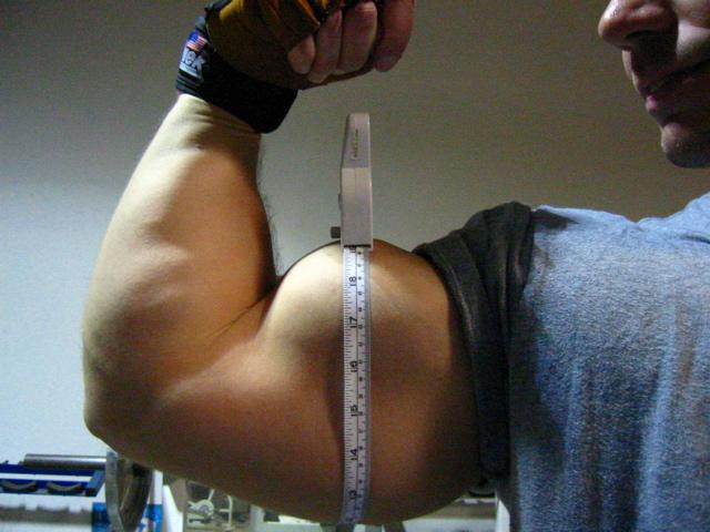 48 cm de tour de bras