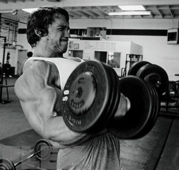 Arnold Schwarzenegger au curl avec haltères