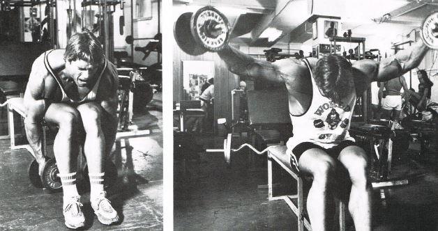 Arnold Schwarzenegger à l'oiseau assis buste penché avec haltères